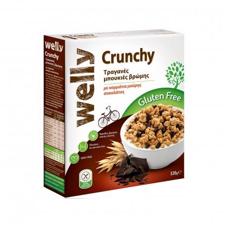 Welly μπουκιές βρώμης ολικής άλεσης crunchy με κομμάτια μαύρης σοκολάτας - χωρίς γλουτένη,προϊόντα που μας ξεχωρίζουν (320g)